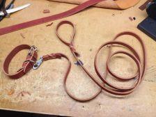 Hundkoppel och halsband